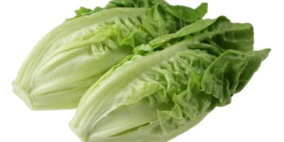 food safty alert romaine lettuce
